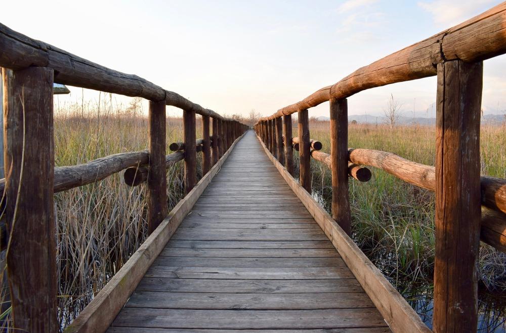 wooden-footbridge-2114668_1920